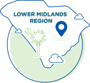 Low Midlands Region