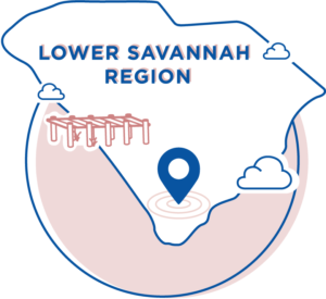 Low Savannah Region