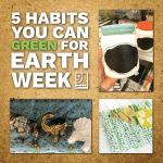 5 HABITS EARTH WK