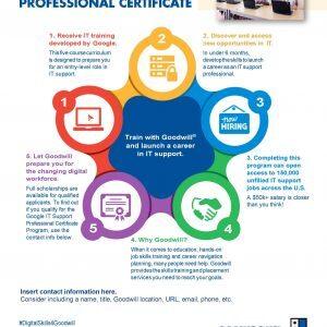 Google IT Cert Infographic Participant scaled